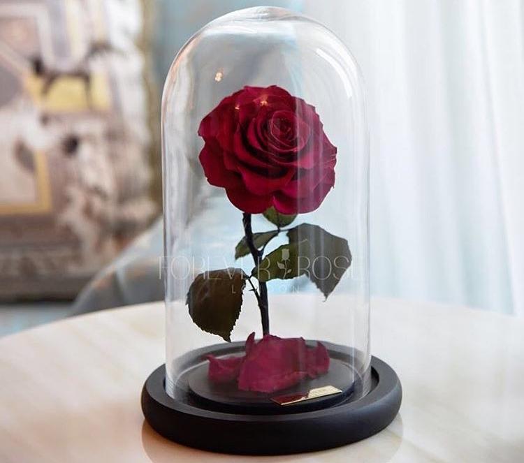 image © Forever Rose