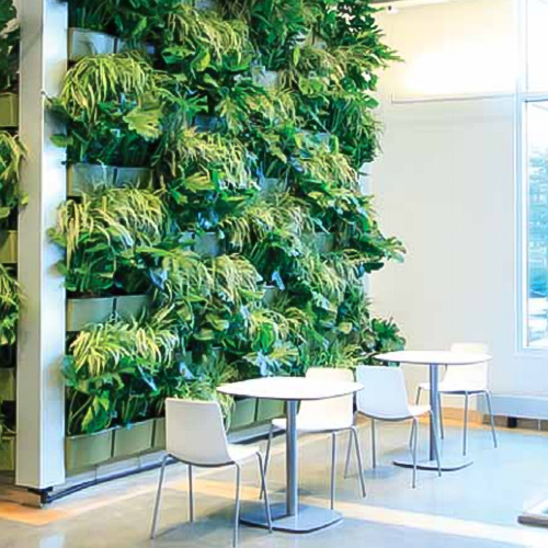 green-wall.jpg