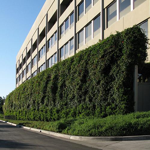 green-building.jpg