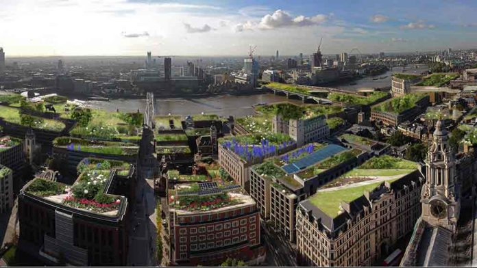 A wide area green roof proposal for the City of London (by Tom Turner)