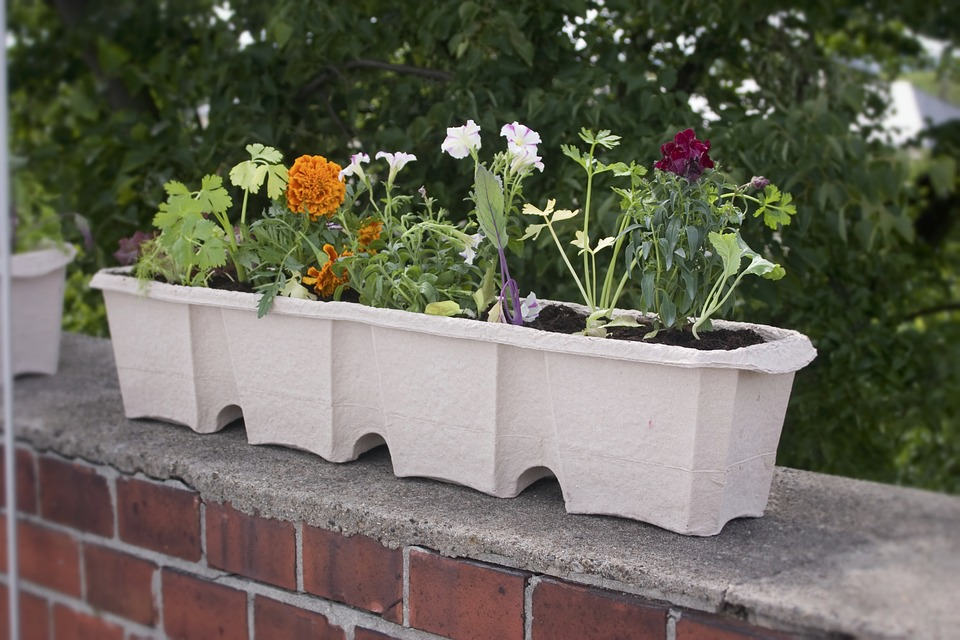 gardening-trends-flower-box.jpg