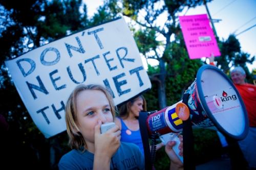 net neutrality 3.jpg