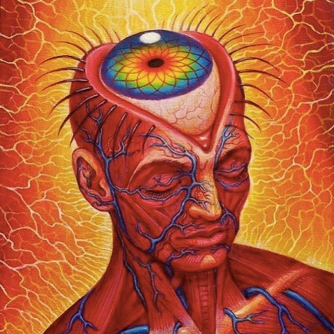So much talk about awakening. But to what? There are multiple stages of awakening and in most you are actually still sleeping. True awakening begins when the kundalini awakens and many, if not most, mistake some pranic movement and activity in chakras to the life changing catalysing awakening of this mighty force. I know I did. ⚕️ When she awakens in your body a whole new journey begins that will humble you, clear karma, activate dormant biological potential, ask you to surrender deeper than ever before and the pulsing throbbing energy will blast you wide open onto a new road where all you ever knew will come to new light. ⚕️ Where knowing turns to unknowing, and realization of the ultimate truth, the ALL and nothing. The absolute reality. ...Happens. ✨🙏🏻✨ ⚕️ Art Alex Gray @alexgreycosm ⚕️ #awakening #selfrealization #selfinquiry #brahman #shakti #kundalini #kundaliniawakening #kundalinirising #kundaliniresning #nonduality