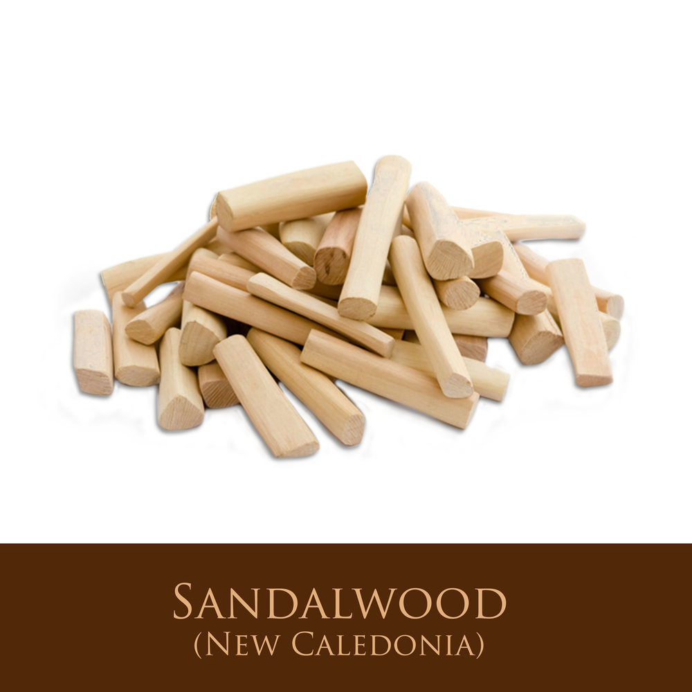 Sandalwood (New Caledonia).jpg