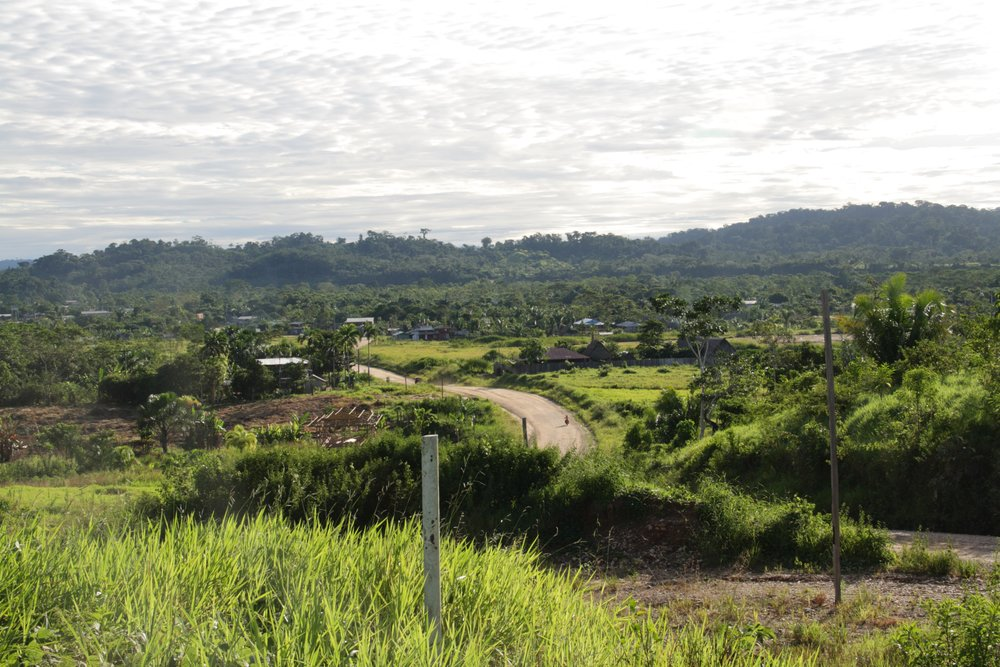 Garcoa Peru Curinana Landscape III.jpg