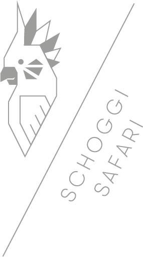 Garcoa+Schoggisafari.jpg