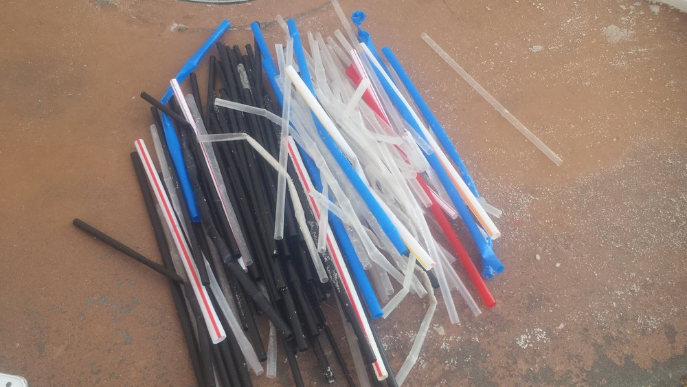 One of 9 adult volunteers picked up 156 straws in 45 minutes. 6 kids helped to collect 105 lbs of trash -