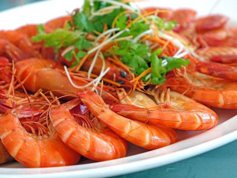 shrimp-salad-833214_1280.jpg