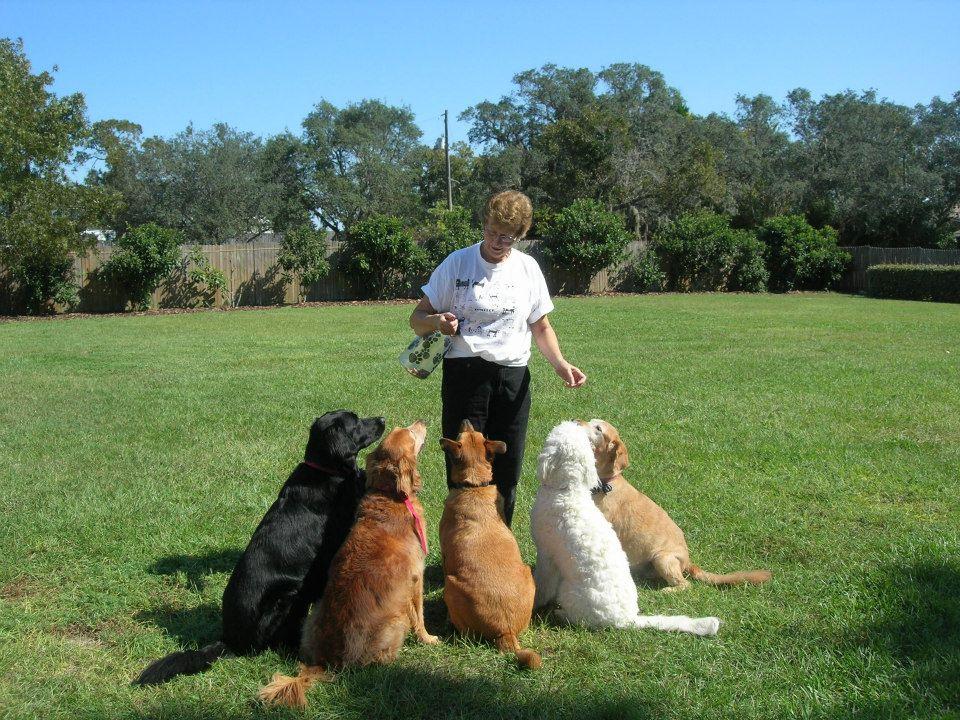 Judy with dogs.jpg