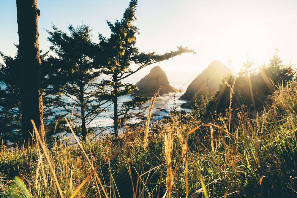 9. I took this landscape shot on a trip along the coast of Oregon. This is near Heceta Head Lighthouse which is an amazing place to explore if you get the chance.