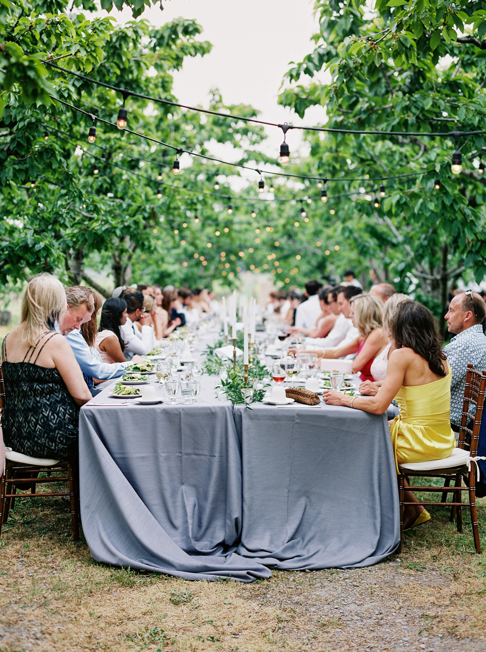 0166-When-He-Found-Her-Vineyard-Wedding-Style-Me-Pretty.jpg