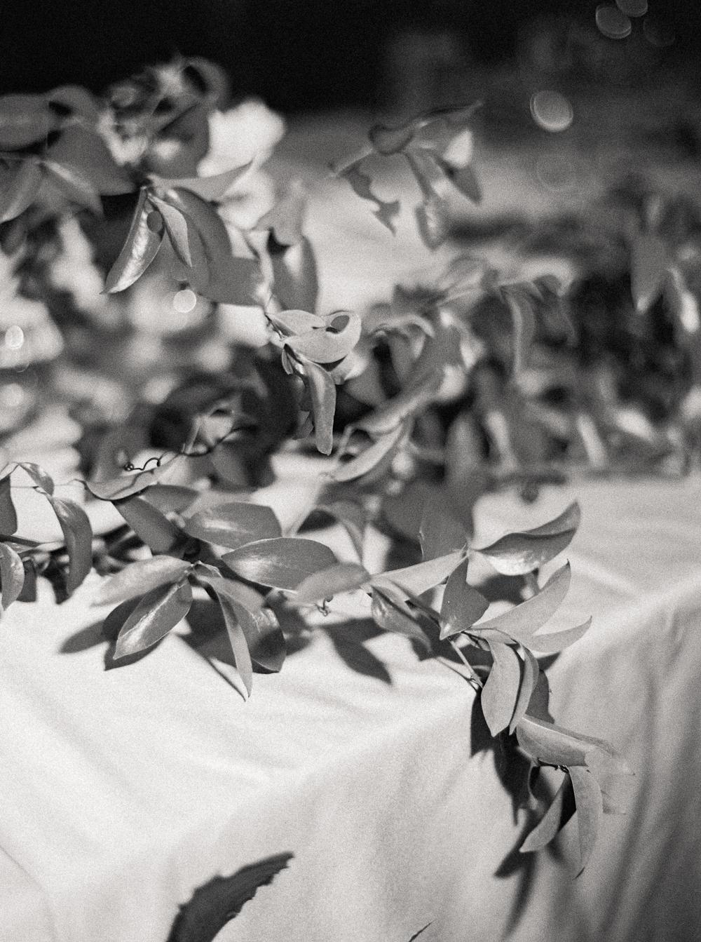 0055-When-He-Found-Her-Muskoka-JW Marriott-The Rosseau-shea-events-sweet-woodruff-canadian-resort-wedding.jpg