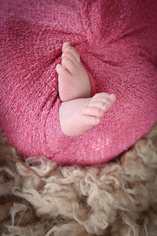 Annabelle {Newborn!}-5.jpg
