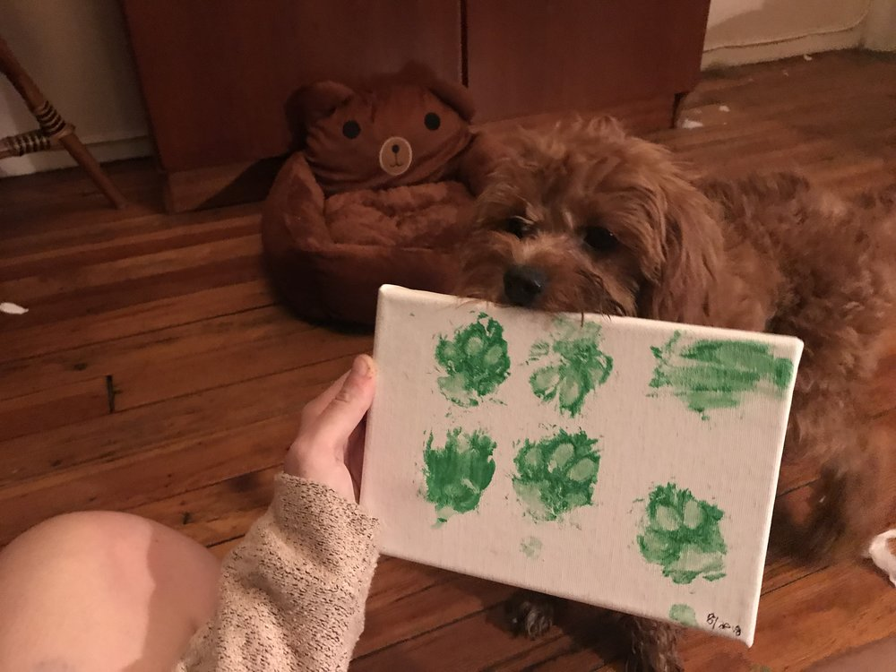 My dog Bear's first piece of artwork!! He may not have graduated puppy obedience school (yet) but he surely is an artist :')  -