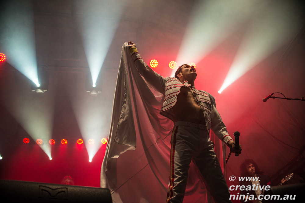 Killer-Queen-Experience-Twilight-at-Taronga-1324.jpg