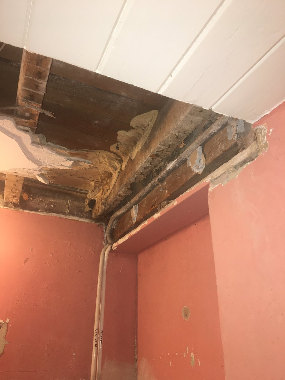 Nice bit of dry rot that had to be treated.