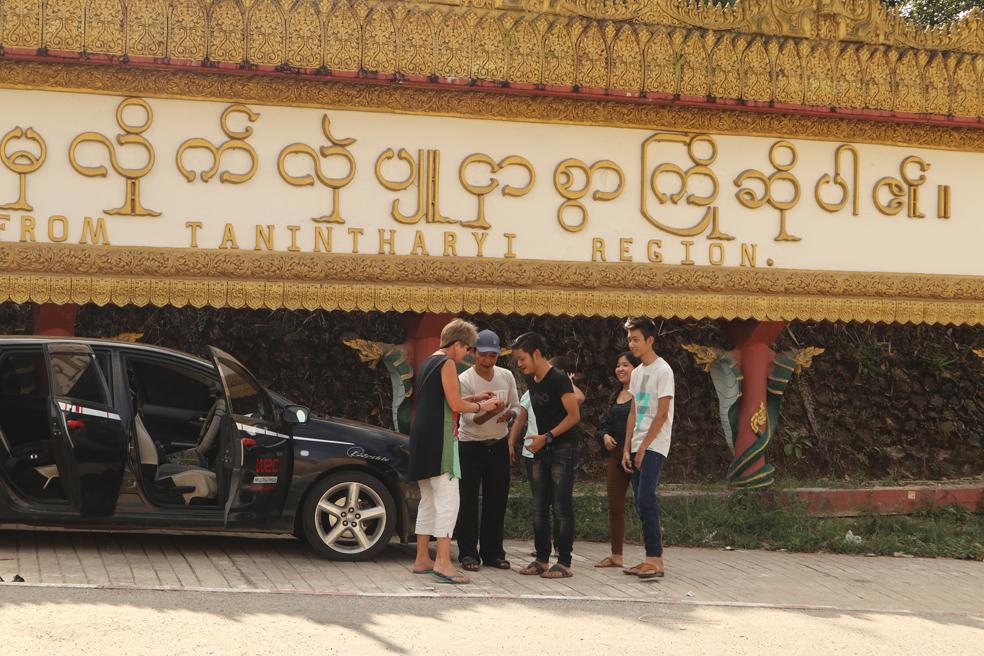 Burmese 3.jpg