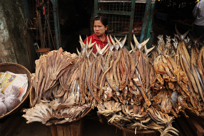 Dried fish seller in Dawei market. Still haven't tried any of that. Can't imagine why...