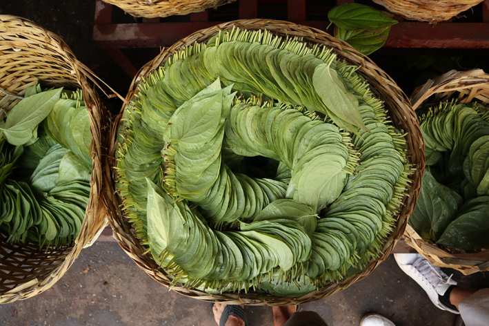 Betel leaves for sale in the market
