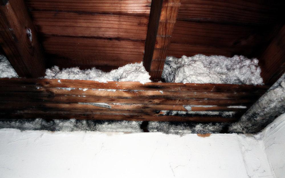 Asbestos remediation sydney