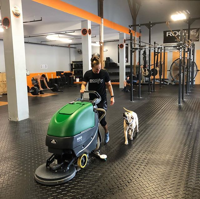 Choosing the bulldog floor cleaner from @factorycleaning was a game changer for us! A deep clean or a tidy up between classes, the bulldog does it all. Gym dog Rue enjoys cleaning the floors with coach @streety2. #bulldogclean #cleangym #crossfit #weightlifting #sportsperformance #fuquayvarina #fvdowntown