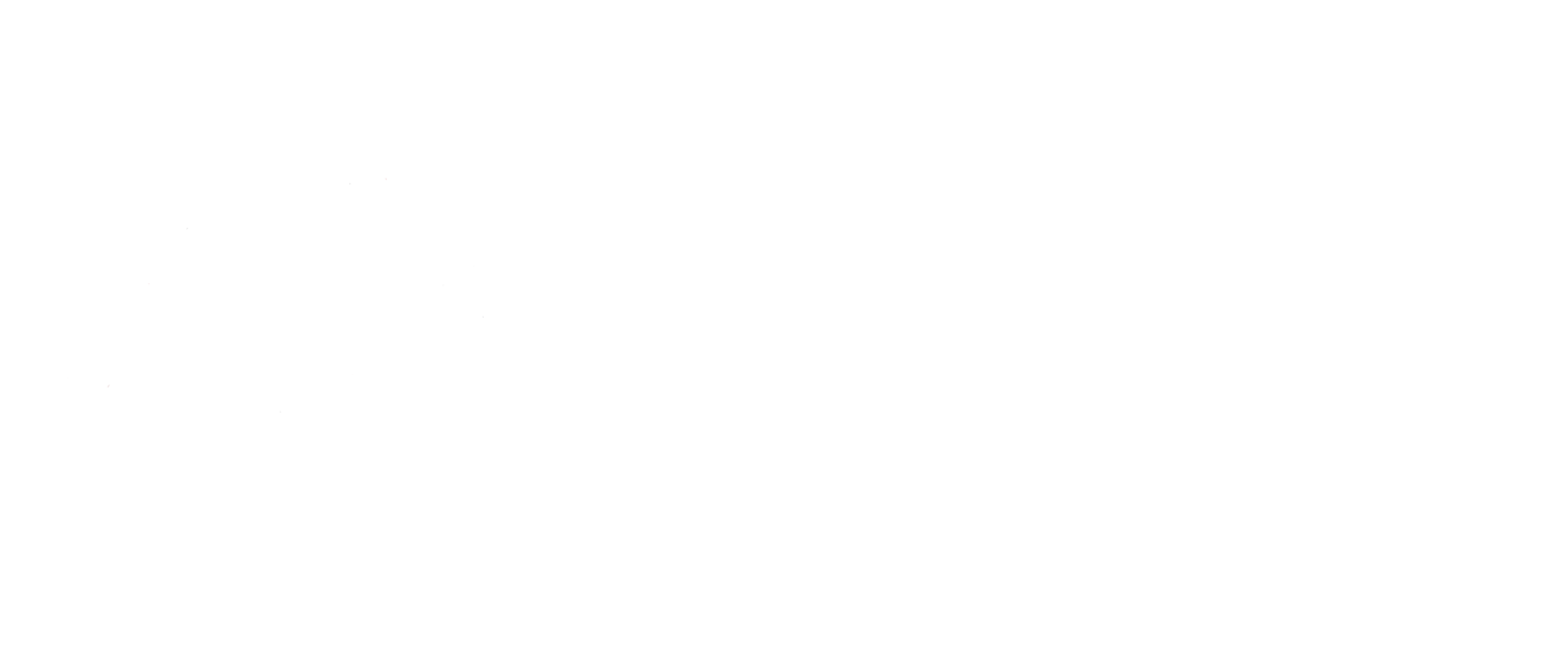 Junior Enterprise USA