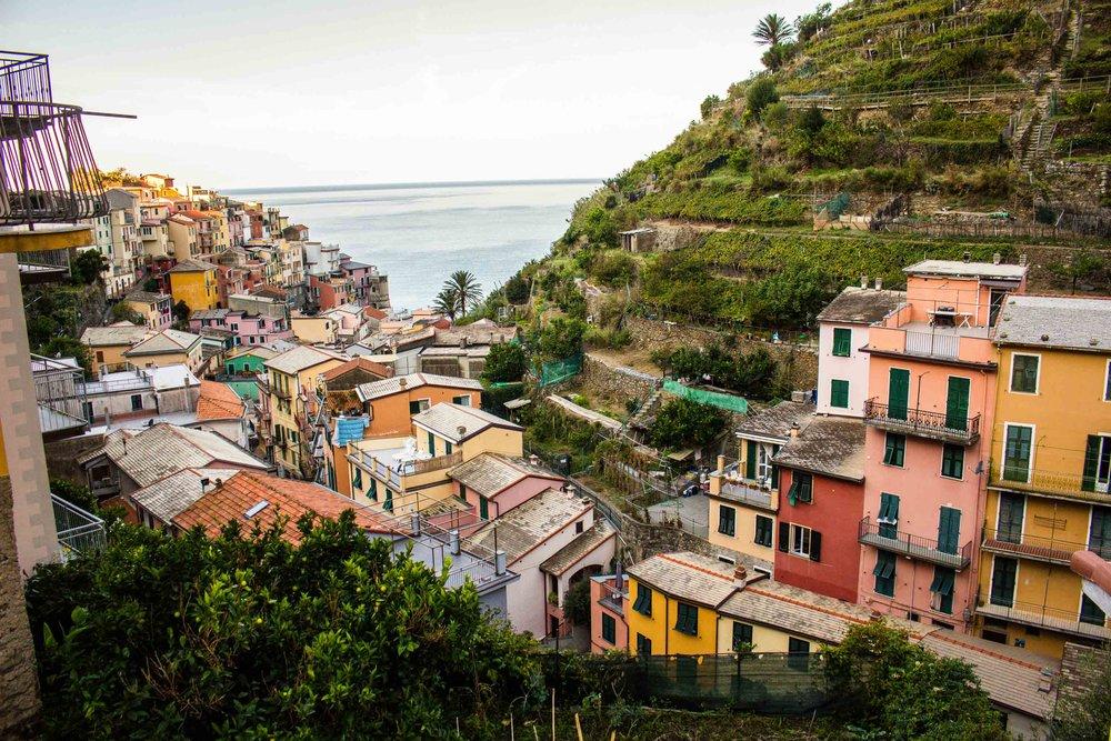 Hillside of Cinque Terre