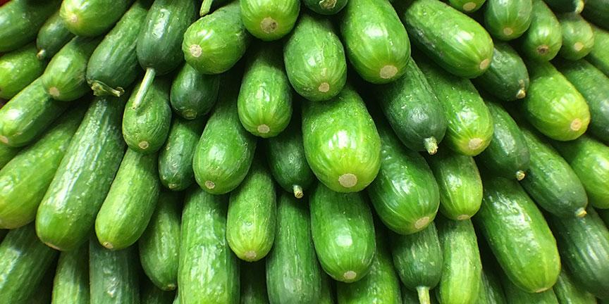 cucumber.jpg