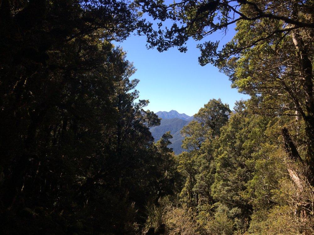 Peak-a-boo view from Kirwans Hut