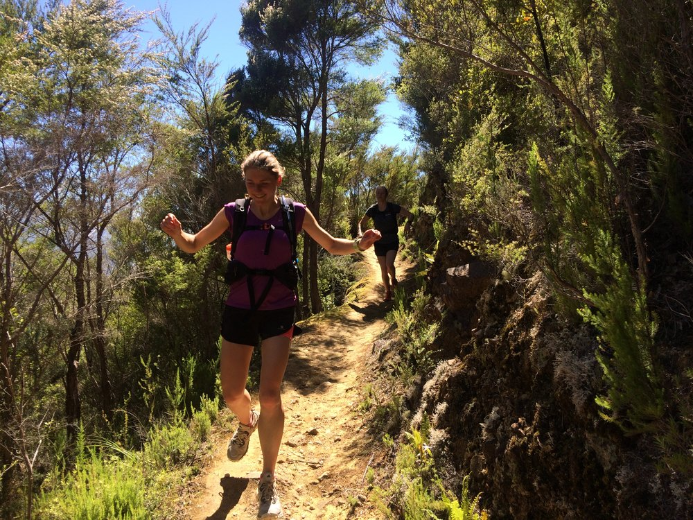 Trail running the Nydia Track with friends in New Zealand