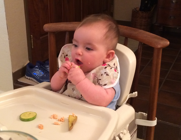 A bit of flaked salmon, sautéed zucchini rounds and potato wedges – a perfect 9 month old dinner!
