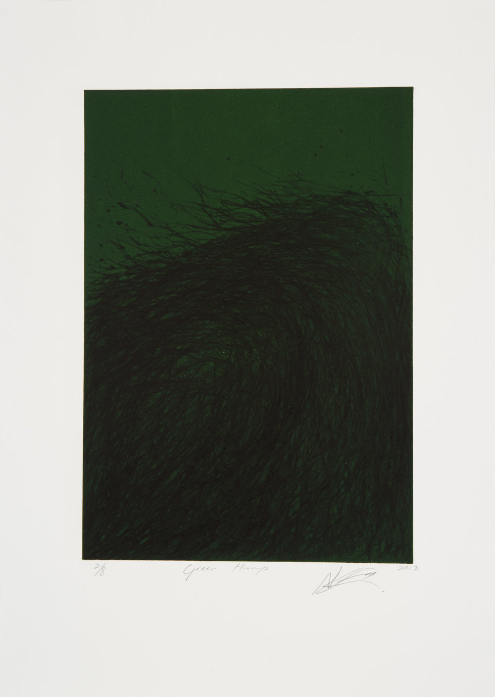 NANDIPHA MNTAMBO     Green Hump, 2012    Dry Point Etching (Edition of 8)  43cm x 31 cm