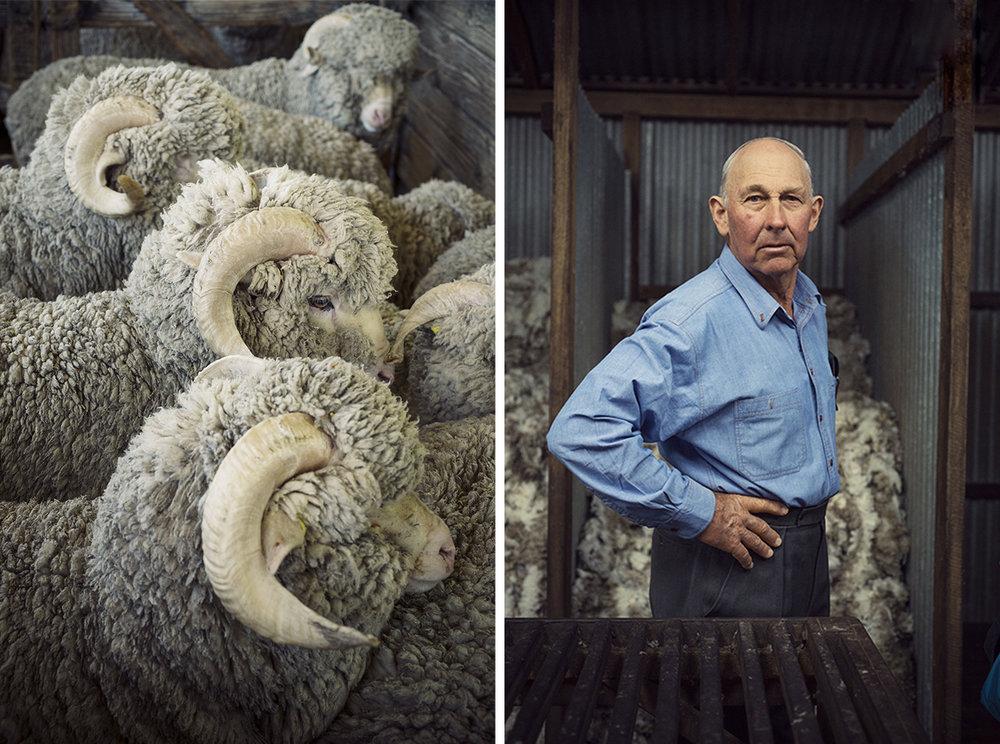 Eleveur de moutons - Loro Piana - Australie