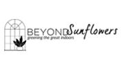 BeyondSunflowers.png
