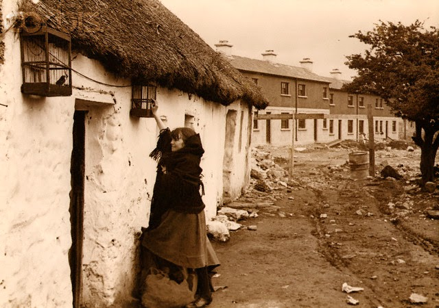 Tending to the birds during the demoltion and rebuilding of Claddagh in the 1930s.