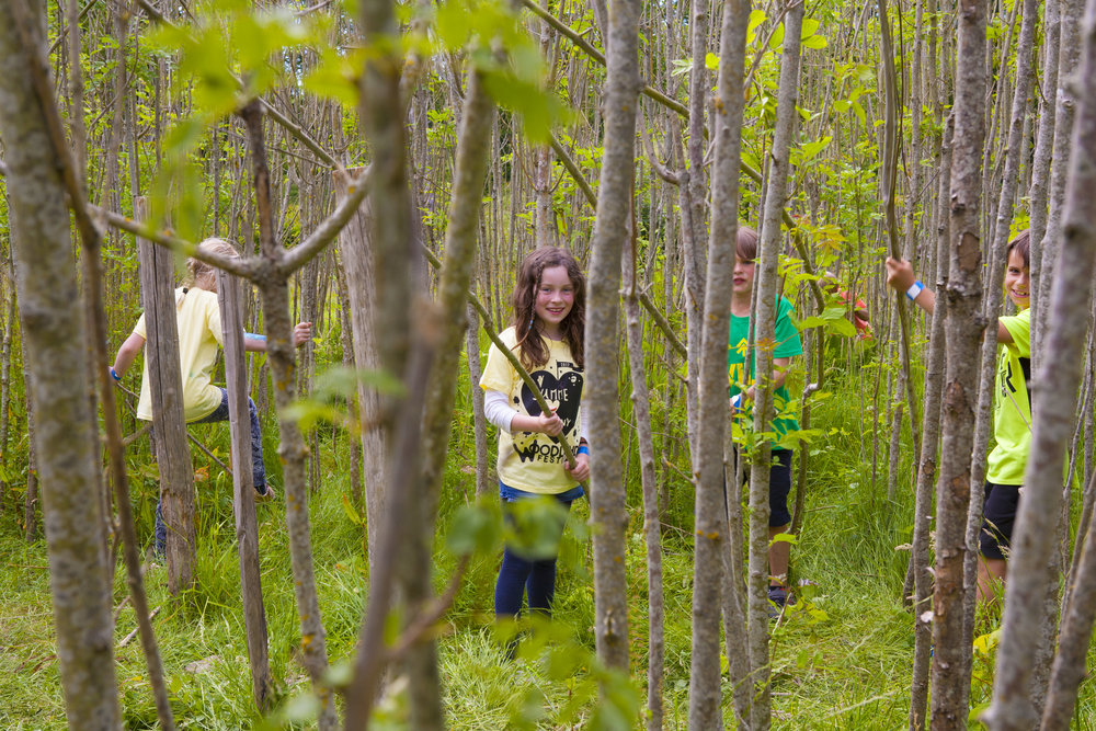 _MG_7983 TREE MAZE.jpg