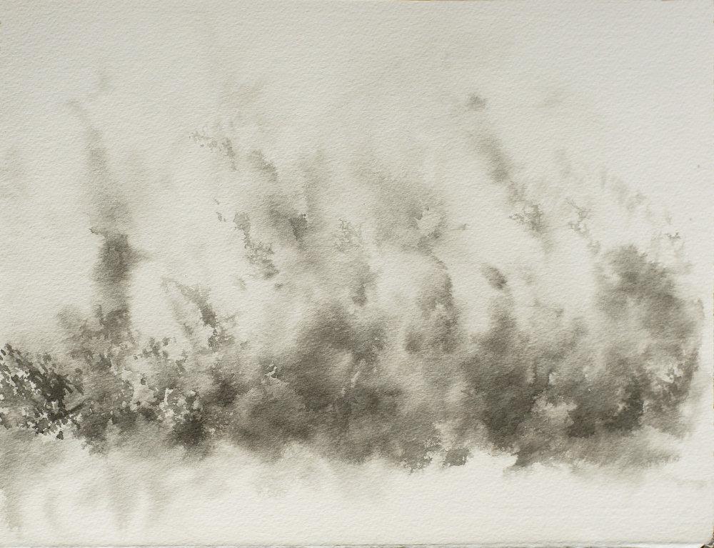 RHSK117 Hillside Forest Rain Light and Rising Mist ( Ink on Paper ) 28..5 x 37 cm