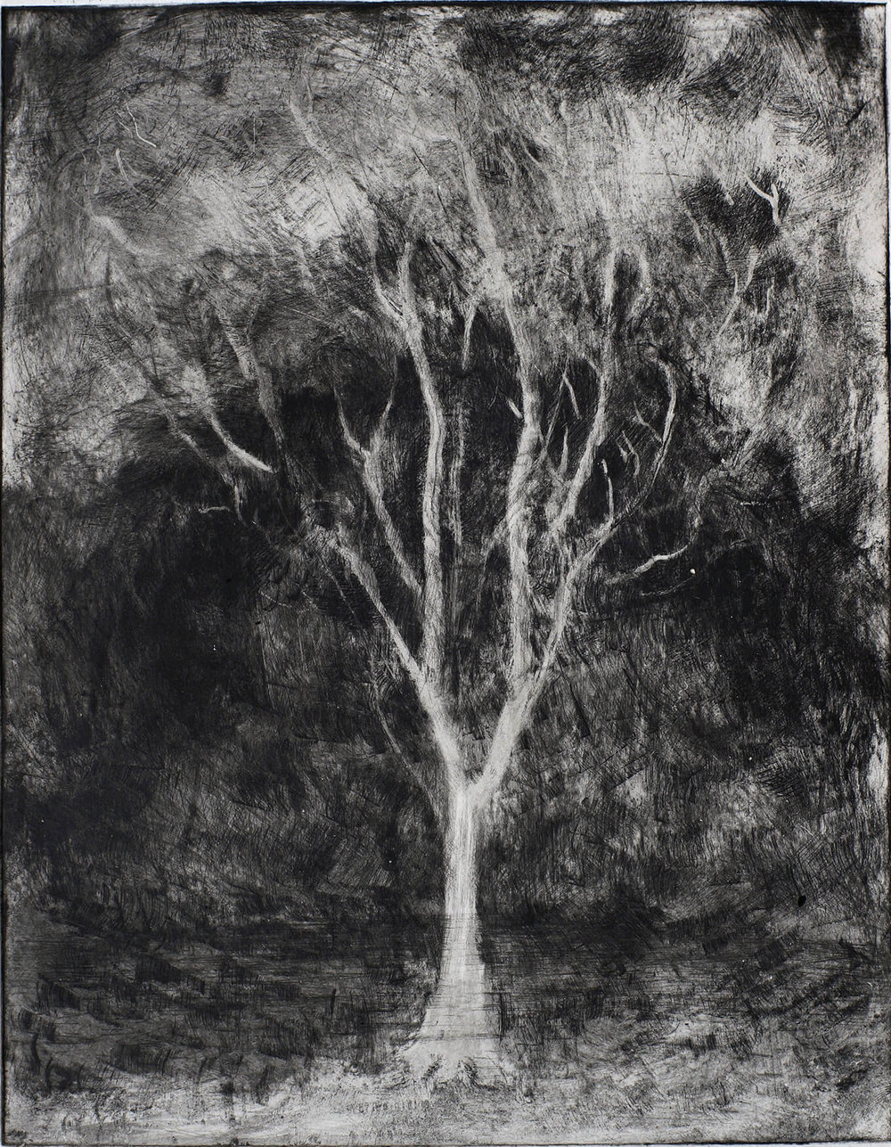 The Tree of Light , Loch and Mountain at Night ( Monoprint ) 25.8 x 20.2 cm