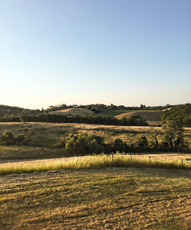 Tuscany Landscape 🌾☀️ #Tuscany #Landscape #EarlyMorning #CountrySide #Italia #NatureLover #PlantsLover #FlowersLover #Landscape #LandscapeDesign #Architecture #ArchiLover #DesignLover #Outdoor #Outdoorliving #DerekCastiglioniOfficial #OutdoorSpaceDesigner #Osd #TheUrbanGardener #MyLifeIsAJungle  #FollowMyGreenAdventures