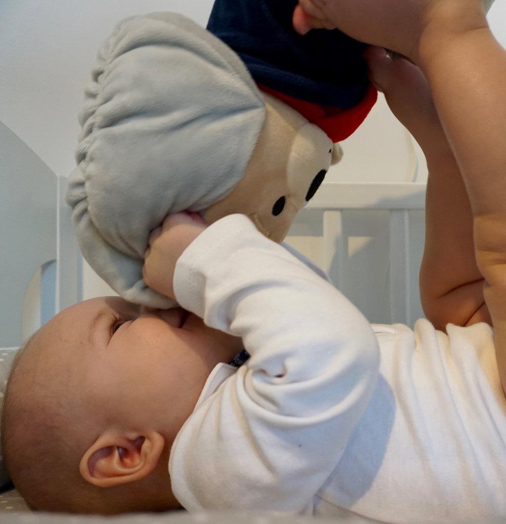 Jasio, 8 months