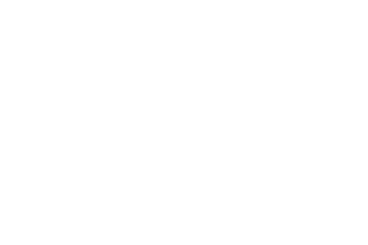 Wolfskin.png