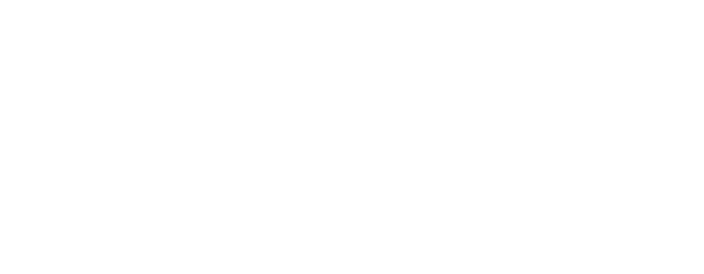 ParnasSys-PleinVan-logo-diapositief.png