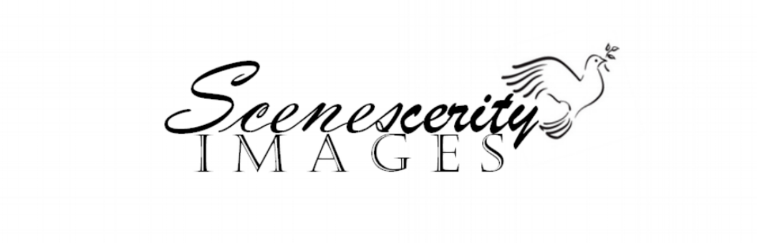 Scenescerity Images