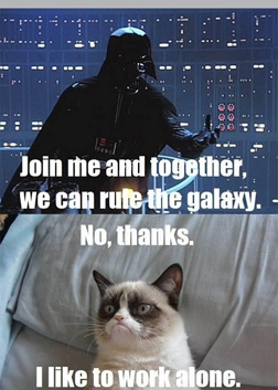Grumpy Cat might like working alone, but not me....