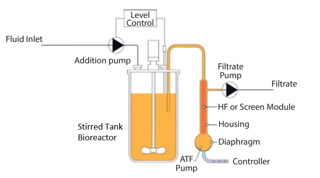 Stirred Tank Bioreactor with ATF attachment. (Image: Bonham-Carter and Shevitz, 2011)