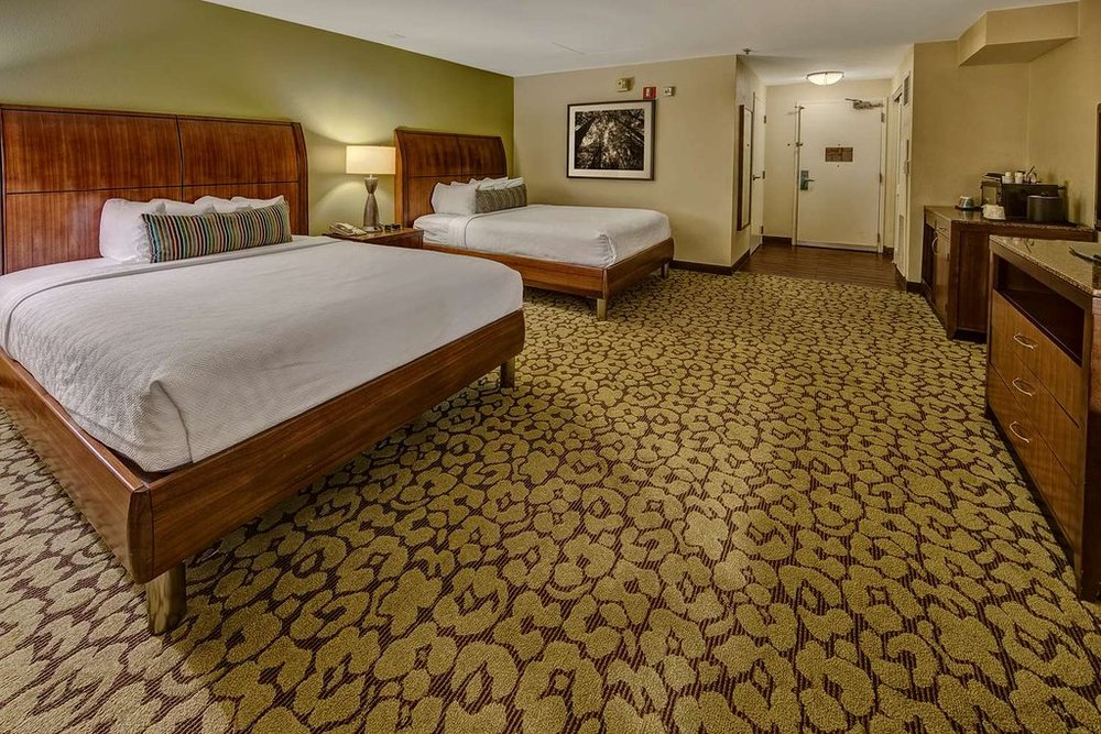 Hilton Garden Inn Queen Room Layout - Complete Room Package Available