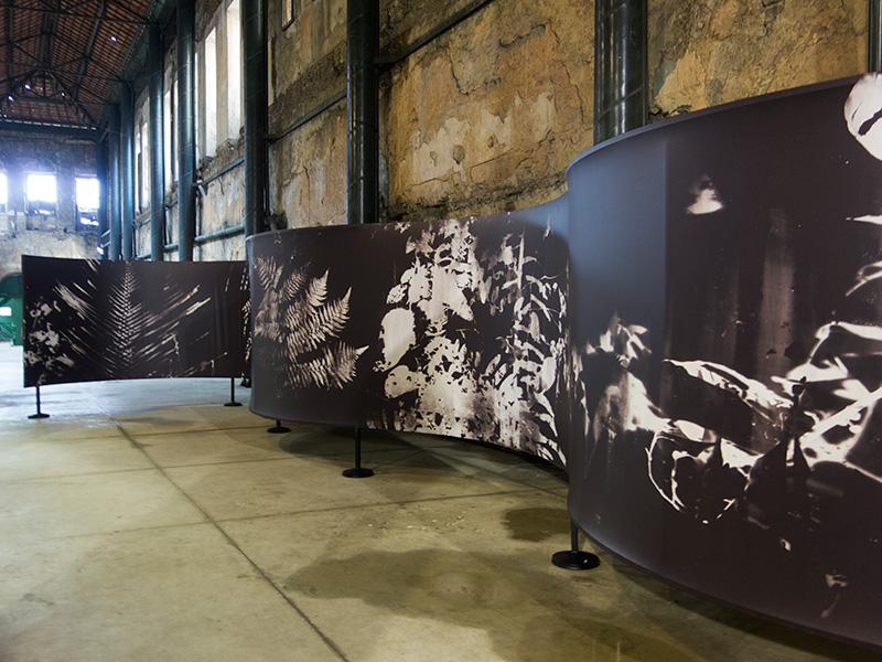 Instalación en Festival Valongo, Santos, Brasil, octubre 2016.  Installation Valongo Festival, Santos, Brasil, october 2016.
