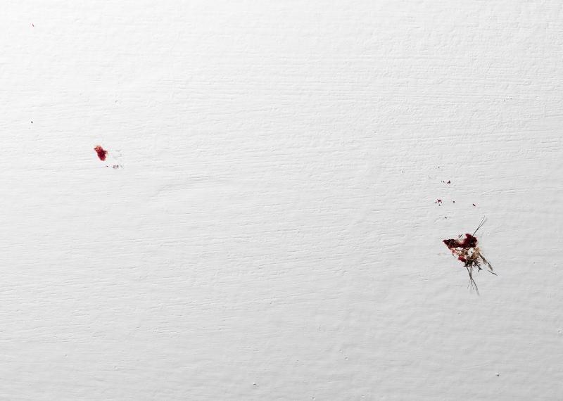 sangredefamilia_5