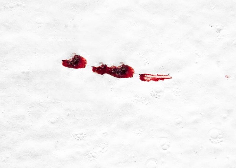 sangredefamilia_9