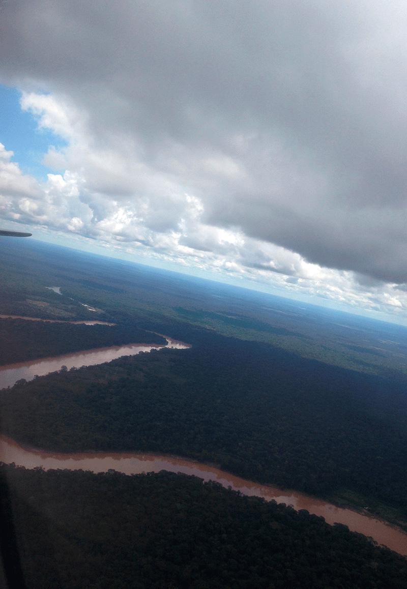 Vista aérea de la selva de Tambopata